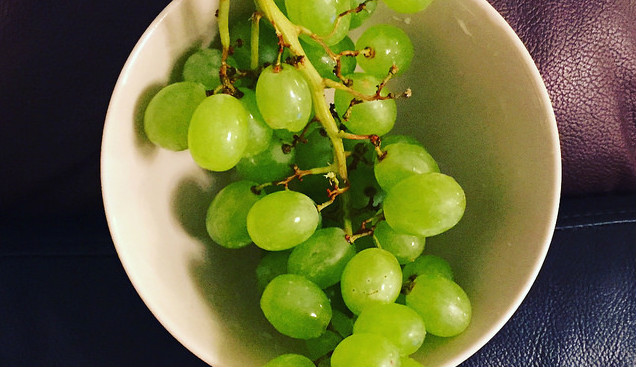 Как ухаживать за сортом винограда  Кавказский ранний