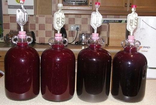 Разнообразные вина из сливы