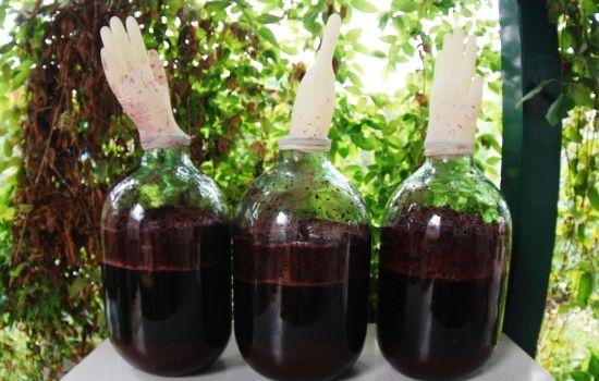 Банки с виноградным вином