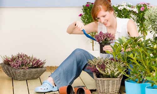 10 ошибок при высадке растений