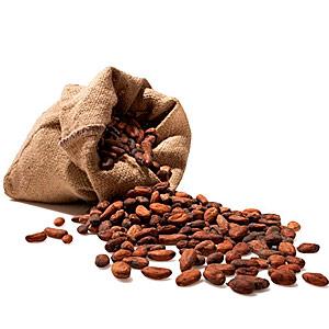 Маска для тела из какао   Домашние рецепты