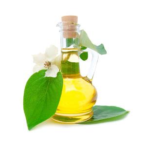 Оливковое масло от морщин – природный бальзам