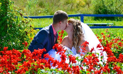 К чему снится регистрация брака