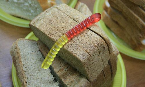 К чему снится толстый червяк фото