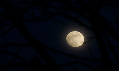 сонник луна