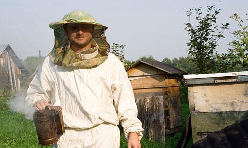 сонник разводить пчел