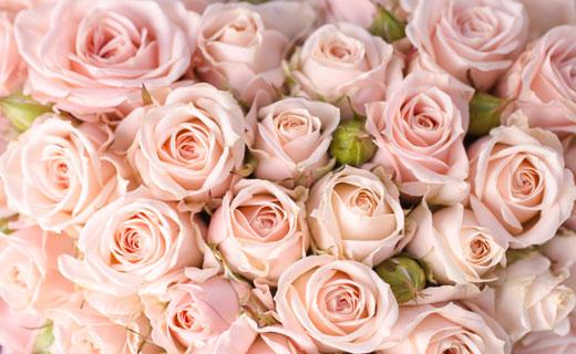 к чему снится розы во сне