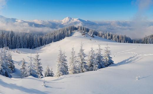 снег в соннике
