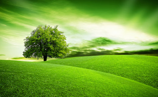 Видеть зелёный цвет во сне